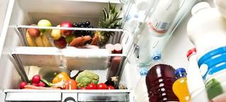 Überraschende Einblicke in europäische Kühlschränke