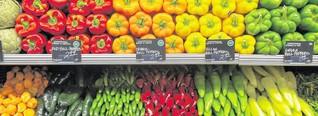 Was Verbraucher über ökologische Lebensmittel wissen sollten