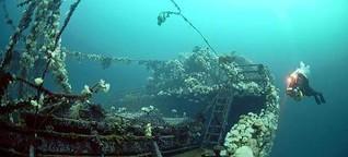 Kriegsspuren in Kanada: Bell Island lockt Taucher in den Atlantik