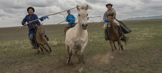 Mongolische Nomaden