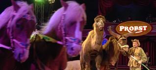 """""""Circus Probst"""" in Neuss: Leidenschaft, Gefühl und Emotion"""