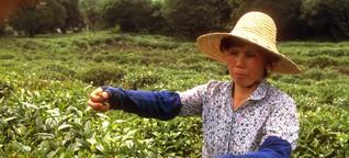 Tee-Riese China behält die edelsten Sorten für sich