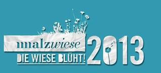 Malzwiese 2013 – Die Wiese blüht!