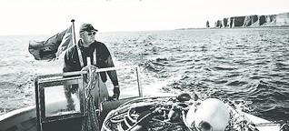 Helgolands letzter Hummerfischer