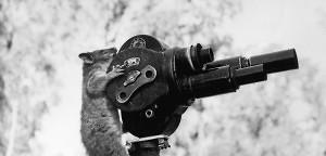Nachproduktion: Der Live-Sender in der Hosentasche - torial.academy blog