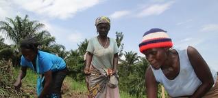 Kongo - Ein Leben im Krieg