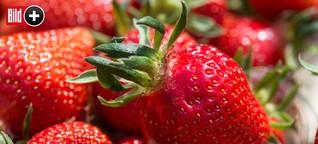 Erdbeeren | Das Geschäft mit der roten Frucht