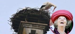 #beatrixvonstorchangegriffen: Unfreiwilliger Twitter-Hype um AfD-Politikerin