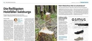 Die fleißigsten Holzfäller Salzburgs