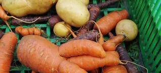 Diese Box gibt krummem Gemüse eine Chance - Gegen Lebensmittelverschwendung