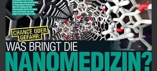 Chance oder Gefahr: Was bringt die Nanomedizin?