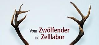 """""""Vom Zwölfender ins Zelllabor"""" - Stammzellforschung für die Endoprothetik"""