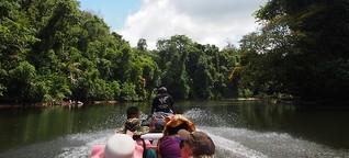 Suriname: Auf wilden Wasserwegen