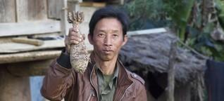 Blindgänger in Laos - Genug Bomben für 3000 Jahre