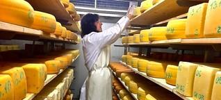 Mobile Käsereien: Milch ist sensibel