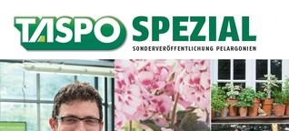 TASPO Spezial Pelargonien