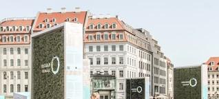 Aufatmen? Green City Solutions entwickeln den smarten Baum für die Stadt der Zukunft