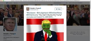 Pepe der Frosch: Lieber tot als Trump-Fan