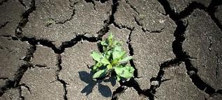 Weltklimapakt: EU springt noch auf Klimaschutz-Zug