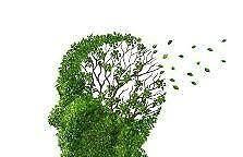 Medizin: Alzheimer - Vergessen, was ein Löffel ist