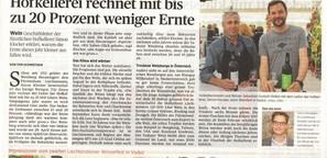 Artikel Liechtenstein: Hofkellerei