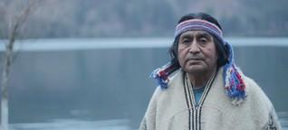 Mapuche in Chile - Kettensägen gegen Baumgeister