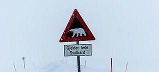 Eisbärenland