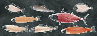 Leckere Fischrezepte