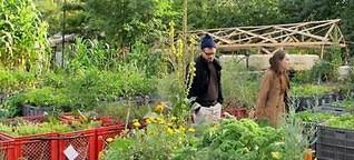 Ein Garten wie die Stadt von morgen