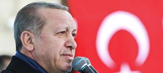 Türkei-Krise: Wie man Erdoğan zur Vernunft bringen kann