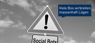 Fake People - Wie man Social Bots in Schach hält
