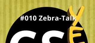 CSyeah #010: Zebra-Talk: Gute Gründe für Gutes gründen | futurphil