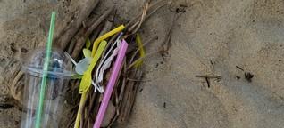 """Gibt es """"Soziales Plastik""""? Ja, und zwar mit Erfolg - Ein ambitioniertes Projekt"""