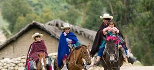 """""""Der König der Löwen"""" spricht auch Quechua"""