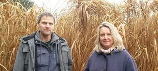 Der Klimawandel stellt Landwirte vor neue Herausforderungen