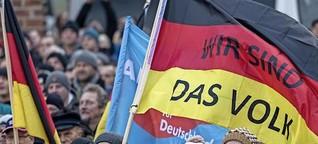 Die AfD auf dem Weg zur Volkspartei?