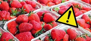 Öko-Test: Gefährliche Pestizide in Erdbeeren von Aldi & Co.
