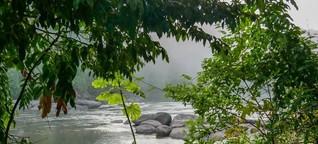 Der Dschungelfluch von Surinam - Rohstoffe, Faultiere und Chinesen