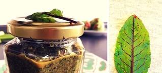Blutampfer-Pesto mit Walnüssen