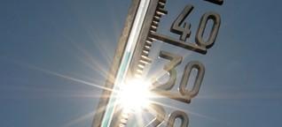 """Hitze in Deutschland: """"Es wird immer mehr Dürren geben"""""""
