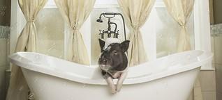 Warum klebt der Duschvorhang am Körper?