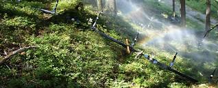Die Regenmacher im Ennstal