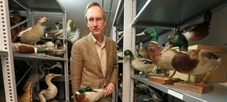 Skurrile Tiergeschichten: Die tote Ente ist immer dabei