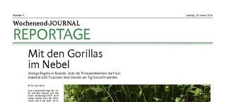 Mit den Gorillas im Nebel