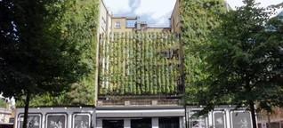 Umweltfreundliche Hotels | DW | 22.09.2018