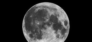 Wann starten die Mondtaxis? Privatflüge zum Mond lassen auf sich warten Die Fachwerkstatt