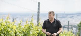 Cobenzl: Wein aus Wiener Hand