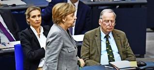 Ein Jahr AfD im Bundestag: Gegenrealität als Geschäftsmodell