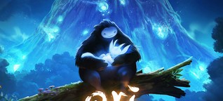 Exklusives Interview zu Ori And The Blind Forest