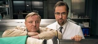 Tatort-Sicherung: Können Tiere erben?